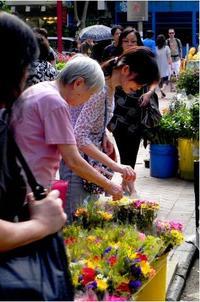 Hong Kong Markets Small-Group Walking Tour