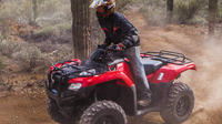 2 Hour Arizona Desert Guided Tour by ATV