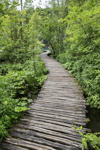 Plitvice Lakes National Park Day Trip from Zagreb