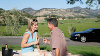 Private Customized Wine Tour of Napa Valley or Sonoma Valley from San Francisco