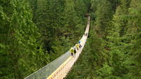Deluxe Vancouver City and Great Outdoors Private Tour