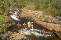 4-Day Kakadu National Park, Katherine and Litchfield National Park Camping Tour from Darwin