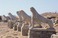 Private Tour: Delos Day Trip From Mykonos