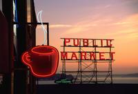 Seattle Shore Excursion: Pre-Cruise Sightseeing City Tour