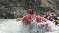 Athabasca Family Rafting Adventure: Class II Plus Rapids