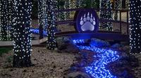 Wild Wonderland at Bearizona