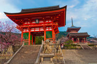 Private Tour: Synchronized Spirtuality: Shinto and Buddhism*