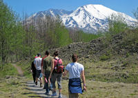 Small-Group Full-Day Tour of Mount St Helens Volcano from Seattle