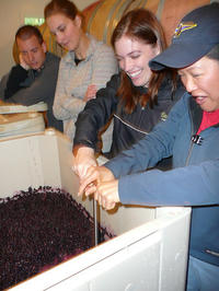 Small Group Woodinville Wine-Tasting Tour