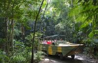 Kuranda Highlights including Rainforestation Aboriginal Culture and Wildlife
