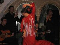 Flamenco in Barcelona with a Japanese Assistant