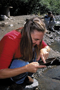 Juneau Shore Excursion: Gold Mining and Panning at Gold Creek from Juneau