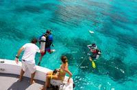 Bermuda 2-Tank Certified Scuba Dive