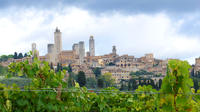 Private Siena to Florence Chianti and San Gimignano Transfer Tour