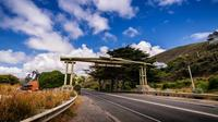 Private Great Ocean Road and The Otways Tour from Melbourne