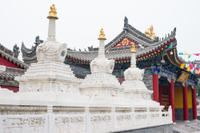 Private Tour: Xi'an Bike Adventure Including Tibetan Temple and Terracotta Warriors