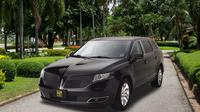 Private Honolulu Transfer: Cruise Port to Airport or Hotel Private Car Transfers