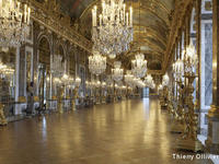 Half-Day Versailles Palace Guided Tour with/ without Japanese Guide