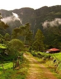 La Chorrera and El Chiflón Waterfall Hiking Adventure from Bogotá