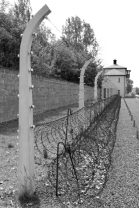 Excursión privada: campo de concentración de Sachsenhausen. desde Berlín