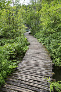 Private Tour: Plitvice Lakes National Park Day Trip from Dubrovnik