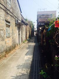 Private Hong Kong Bike Tour: Exploring the New Territories