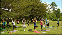 Yoga And Meditation Experience at Lodhi Gardens in Delhi