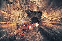 Day Trip from Reykjavik: Cave Exploring in Gjábakkahellir and Snorkeling in Silfra