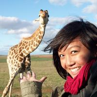 2-Day Private Western Cape Safari and Route 62 from Cape Town