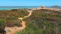 Full-Day Guided Cape West Coast Private Tour from Cape Town