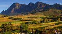 Shore Excursion: Private Stellenbosch Winelands Taste Tour from Cape Town
