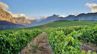 Super Saver: 2-Day Cape Peninsula, Boulders Beach, Winelands from Cape Town