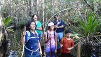 Florida Everglades Swamp Walking Eco-Tour