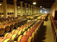 Bordeaux Super Saver: Gourmet Food Walking Tour with Lunch plus Médoc Wine Tasting