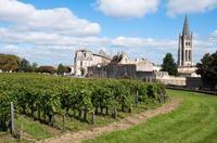 Bordeaux Super Saver: Small-Group Wine Tasting and Lunch plus St-Emilion Wine Tour*