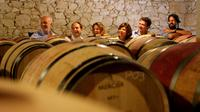 Small-Group Graves Wine Tasting and Chateaux Tour from Bordeaux