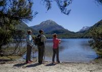 Ultimate Nature Experience from Queenstown: Dart River Jet Boat Ride and Lake Sylvan Hike