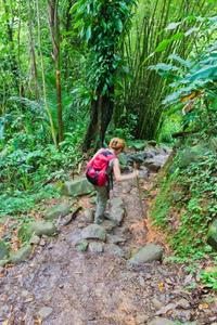 Small-Group Hiking Adventure through Grand Etang National Park in Grenada