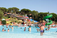 Marineland Dolphins Show and Water Park Admission Ticket with Transport from Costa Brava