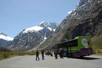 Milford Sound Cruise and Optional Coach Tour*