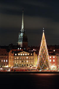 Christmas Walking Tour of Stockholm