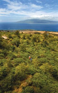 Ka'anapali Zipline Adventure on Maui