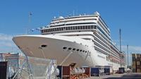Private Transfer Buenos Aires Cruise Terminal to Airport - One Way or Round Trip Private Car Transfers