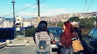 Valparaíso Private Walking Tour