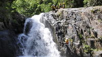 Small-Group Afternoon Canyoning Experience from Cairns or Port Douglas Private Car Transfers
