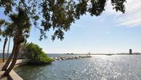 St Petersburg Segway Nature Tour