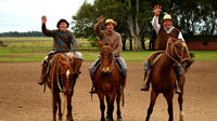Buenos Aires Combo Tour: City Sightseeing and Tigre Delta Half-Day Trip Plus Gaucho Day Trip to Santa Susana Ranch
