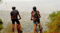 Iguazú Bike Tour to the Yaguarundi Road from Puerto Iguazú