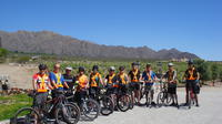 Wine Route Bike Tour With Wine Tasting From Cafayate