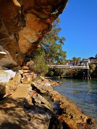 Private Sydney Harbour National Park Walking Tour